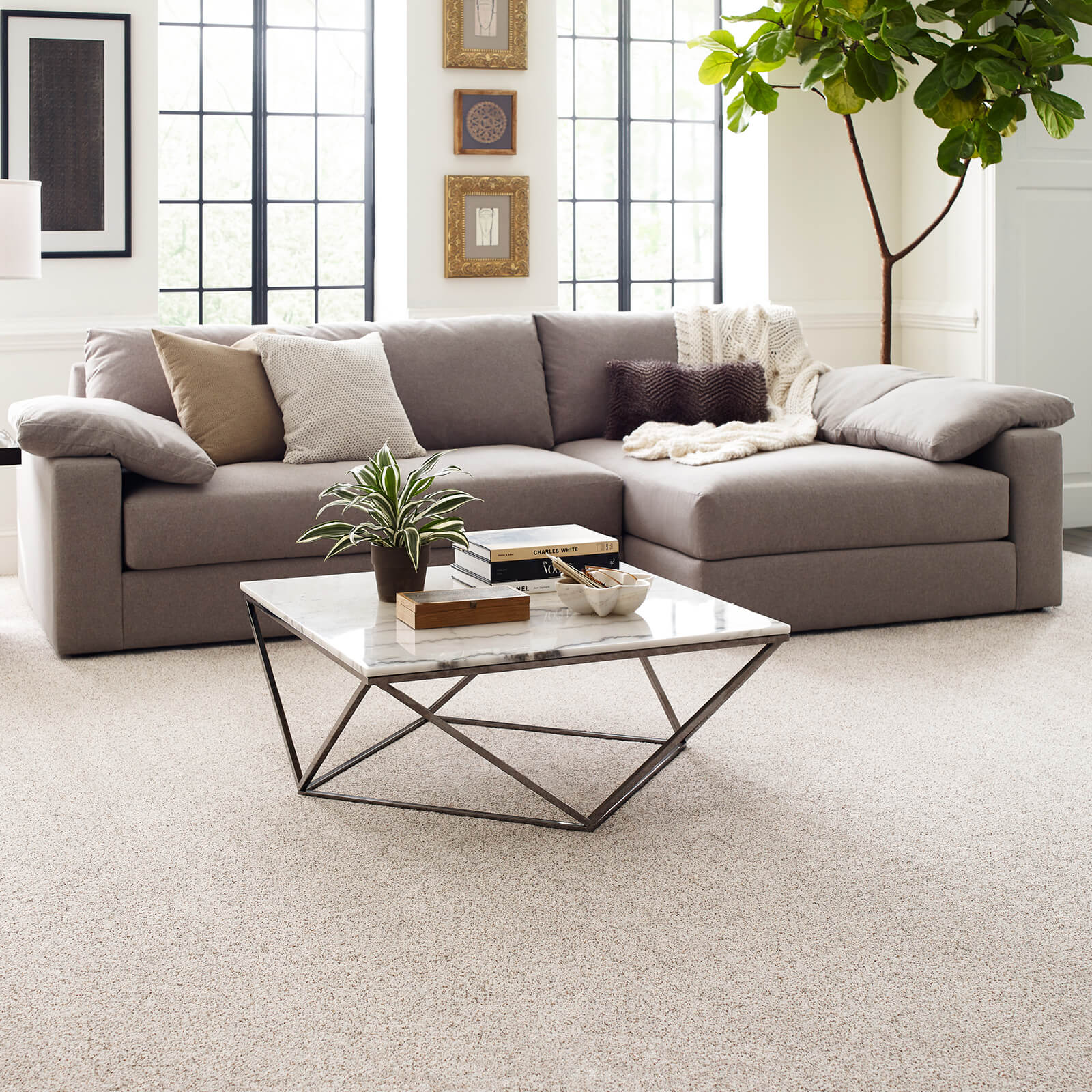 Living Room grey Carpet | Wacky's Flooring