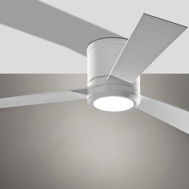 Light in Fan | Wacky's Flooring